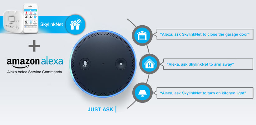 Connected Voice Services